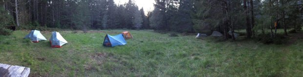 Backpacking tents set up in a meadow